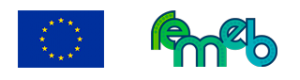 logo_REMEB